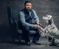 时髦的有胡子的男性坐椅子和爱尔兰人的特定装置狗 库存照片