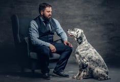 时髦的有胡子的男性坐椅子和爱尔兰人的特定装置狗 免版税库存照片