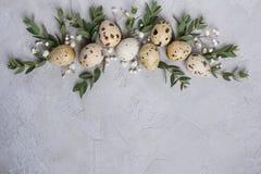 时髦的框架背景用鹌鹑复活节彩蛋和玉树叶子小树枝  在与地方的具体背景文本的 免版税库存图片