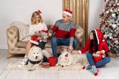 时髦的毛线衣和逗人喜爱的滑稽的狗的幸福家庭在与ligths的圣诞树 免版税库存图片