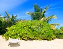 时髦的海滩睡椅 免版税图库摄影
