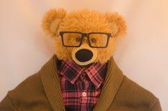 时髦的熊 免版税库存图片