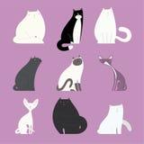 时髦的猫设置用不同的似猫的身体 免版税库存照片