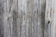 时髦的葡萄酒背景:木房子墙壁用蓝色油漆报道的由黄色青苔制成射线 免版税库存图片