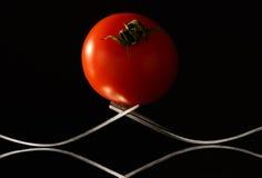 时髦的蕃茄 库存照片