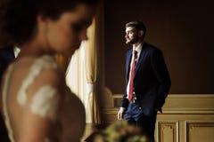 时髦的豪华摆在ba的新娘和英俊的典雅的新郎 库存照片
