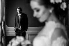 时髦的豪华新娘和英俊的典雅的新郎backgrou的 库存照片