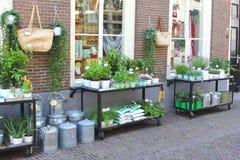 时髦花店在阿莫斯福特,荷兰 免版税库存照片