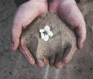 时间沙子 库存照片