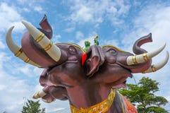 时代苍白大象 库存图片