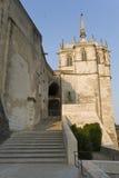 昂布瓦斯城堡法国 免版税库存照片