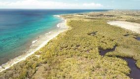 昂斯市du Souffleur,盐水湖,路易港,格朗德特尔岛,瓜德罗普,加勒比鸟瞰图  股票视频