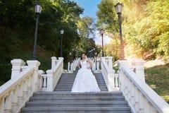 昂贵一件白色的礼服的深色的新娘 免版税库存图片