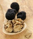 昂贵的罕见的黑块菌蘑菇 图库摄影
