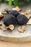 昂贵的罕见的黑块菌蘑菇 库存图片