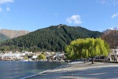 昆斯敦,新西兰湖边  免版税库存图片