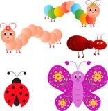 昆虫例证,瓢虫,毛虫,蚂蚁,蝴蝶 库存照片