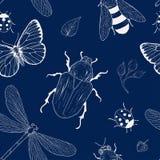 昆虫无缝的样式 免版税库存图片