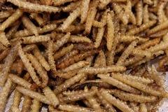 昆虫油煎了,酥脆桑蚕,普遍的昆虫快餐便宜地高蛋白在泰国低脂肪街的食物和许多亚洲国家 免版税库存照片