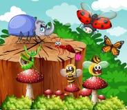 昆虫的不同的类型在庭院里 向量例证