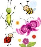 昆虫集 免版税库存照片