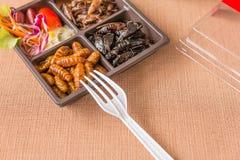 昆虫食物汇集 免版税库存照片