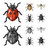 昆虫,臭虫,甲虫,爪子 昆虫设置了在动画片,单色样式传染媒介标志股票例证网的汇集象 图库摄影