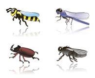 昆虫 库存照片