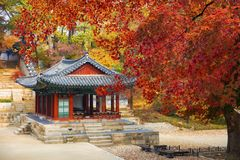 昌德宫宫殿在秋天汉城韩国 免版税库存图片
