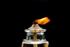 明亮地烧在黑背景的一个轻的蜡烛 库存照片