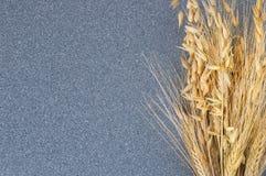 明亮地麦子和大麦的黄色耳朵在灰色花岗岩背景  免版税库存图片