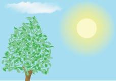 明亮地shini天空结构树 库存照片