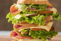 明亮的三明治用火腿乳酪和绿色特写镜头 库存照片
