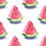 明亮的五颜六色的可口鲜美美味的成熟水多的逗人喜爱的红色夏天秋天新点心切片与阴影的西瓜仿造wat 库存例证
