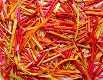 明亮的五颜六色的棍子-桃红色,黄色,红色,桔子-作为抽象明亮的晴朗的背景 免版税库存图片