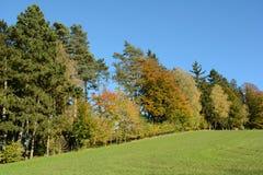 明亮的五颜六色的秋天森林-农村风景 免版税库存图片
