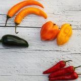 明亮的五颜六色的被分类的胡椒 库存图片