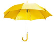 明亮的伞黄色 库存图片