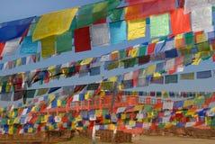 明亮的佛教祷告行在背景中下垂,菩萨释伽牟尼,蓝毗尼,尼泊尔诞生的一个棕色大厦 免版税库存图片
