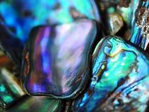 明亮的充满活力的五颜六色的paua壳背景 库存照片