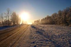 明亮的冬天太阳 库存照片