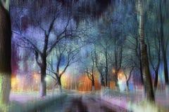 明亮的冬天童话森林 免版税库存照片