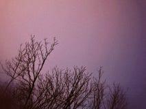 明亮的冬天蓝色清楚的天空 库存图片