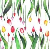 明亮的可爱的美好的郁金香红色黄色桃红色紫色淡紫色的春天垂直的样式开花水彩 库存例证
