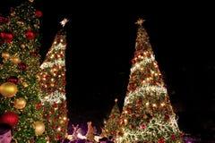 明亮的圣诞树在晚上 免版税库存图片