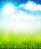 明亮的夏天传染媒介 免版税库存照片