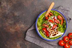 明亮的夏天沙拉用山羊乳干酪希脂乳,蕃茄,红洋葱和 免版税库存照片