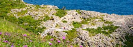 明亮的夏日-人们在圣约翰& x27去步行沿Cabott足迹; s纽芬兰,加拿大 免版税库存照片