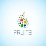 明亮的套不同的果子 免版税图库摄影