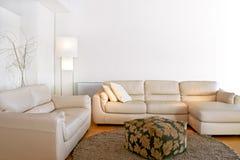 明亮的客厅 免版税库存图片